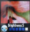 tracfone motorola c261 camera brightness control