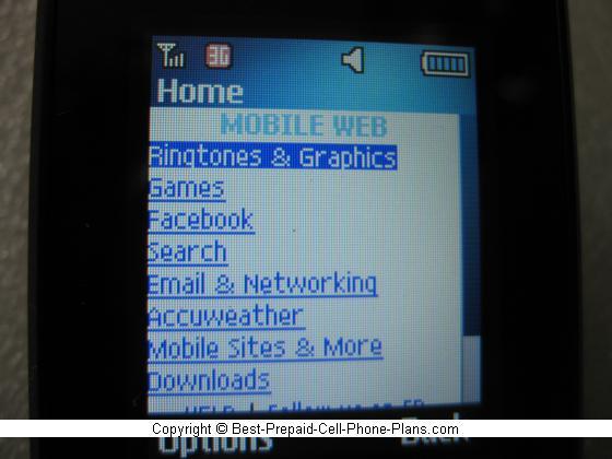 Samsung S275g 3G web browser