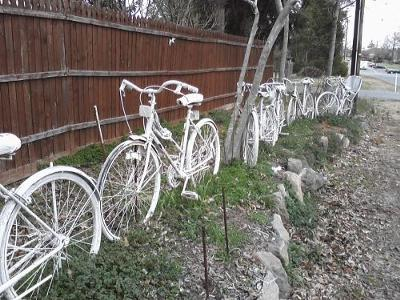 white bicycles in manassas