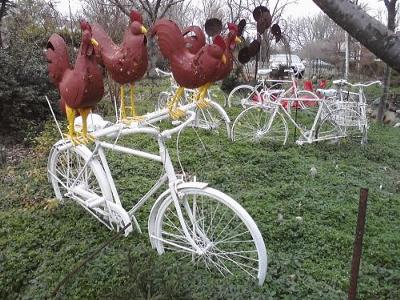 white bicycle with roosters in manassas