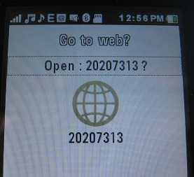 Kaywa Reader java app on Motorola EX124g reading QR code for google.com