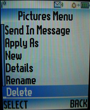 Delete pictures from Motorola W376g